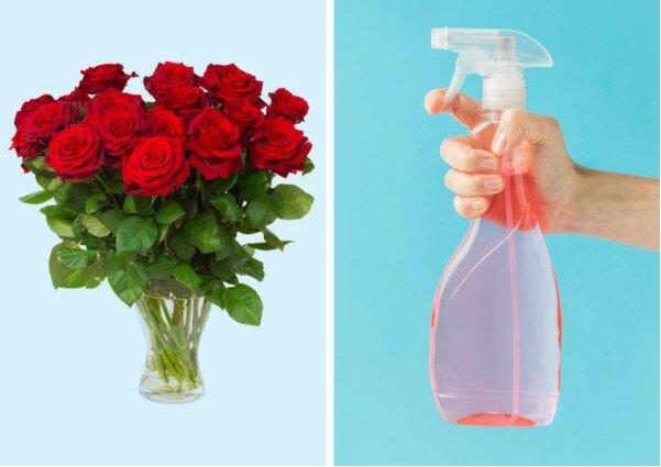 Dziwne i skuteczne sposoby na ożywienie kwiatów, o których wiedzą tylko kwiaciarnie