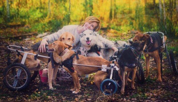 Kobieta o wielkim sercu. Rzuciła pracę, by zająć się potrzebującymi psami. Dziś ma ich ponad setkę