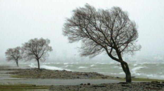 IMGW wydał alerty pogodowe dla trzynastu województw. Powieje nawet 100 km/h