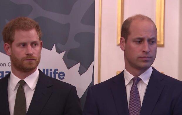 Książę Harry, książę William/ screen youtube