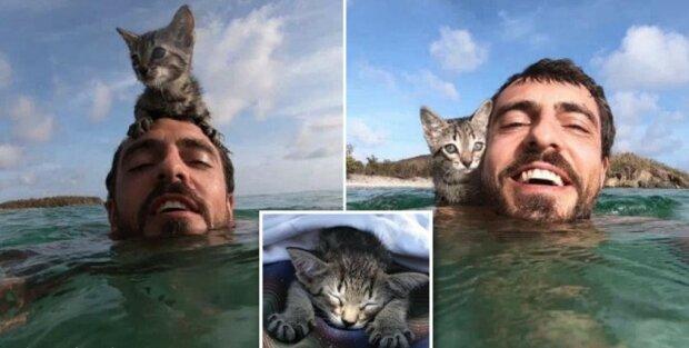 Kotek tak bardzo kocha swojego mistrza, że nawet pływa z nim w oceanie
