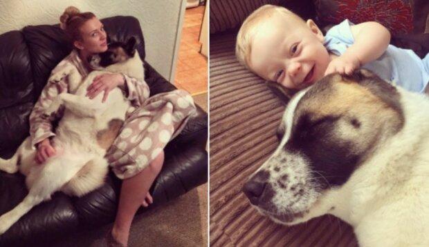 Pies i jej właścicielka/screen Youtube @My Pets