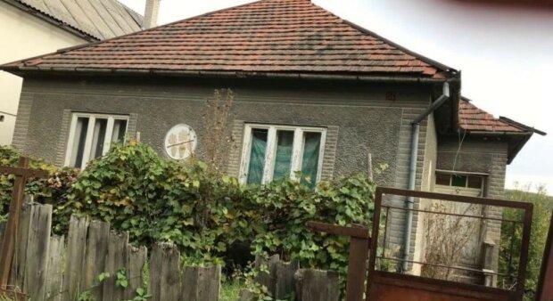 dom we wsi, screen Google