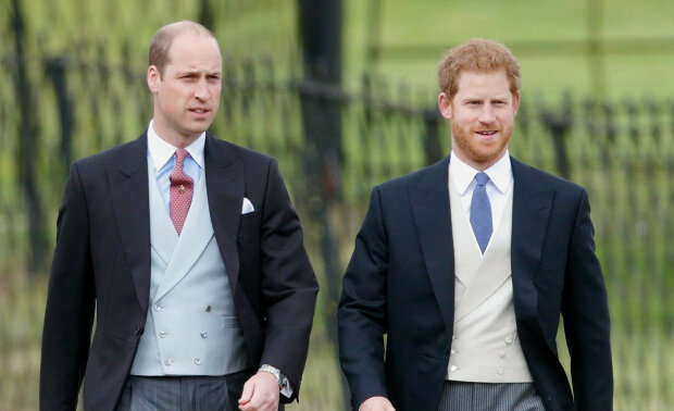 Niezwykły sposób uczczenia matki. William i Harry z nowym pomysłem upamiętnienia księżnej Diany