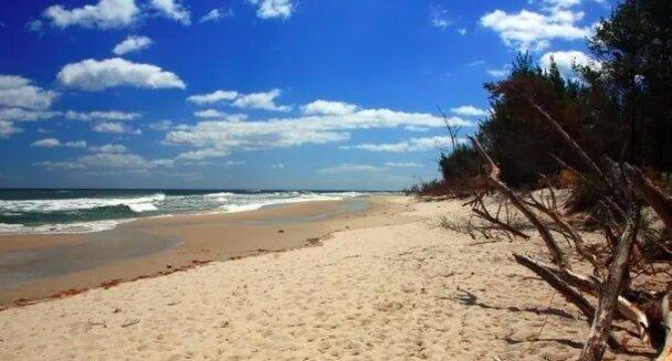 Makabryczne odkrycie na plaży! / traveltriangle.com