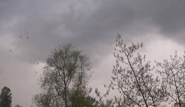 Niebezpieczna pogoda/YouTube @Łowiczak123