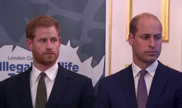 William, Harry/ screen yt