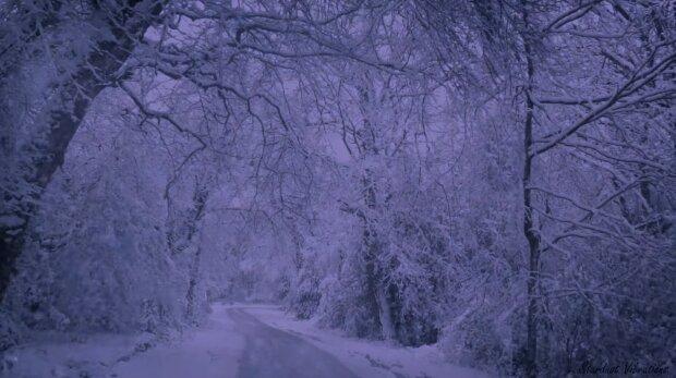 Śnieżyca. Źródło: Youtube Stardust Vibes - Relaxing Sounds