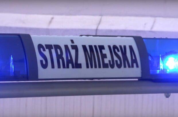 Kraków: na Plantach znaleziono starszego i zdezorientowanego mężczyznę. Straż miejska poinformowała o finale akcji