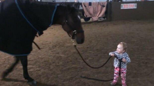 Niesamowity przypadek przyjaźni rocznej dziewczynki i konia. Gdy dziecko wyprowadza zwierzę na spacer, od razu staje się sensacją