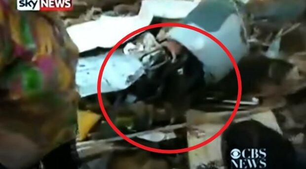 Dom tej staruszki legł w gruzach, lecz podczas wywiadu zdarzył się cud [WIDEO]