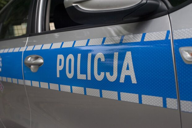Gdańsk: 240  tysięcy zniknęło z szkolnej kasy. Policjanci zatrzymali podejrzaną. Co się wydarzyło