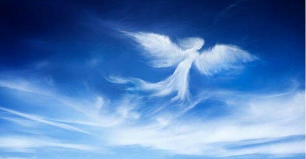 anioł chce cię ostrzec, screen Google