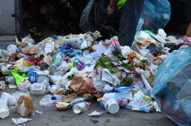 Kraków: to już pewne. Miasto podwyższa ceny za wywóz śmieci. Brak ich segregacji może sporo nas kosztować
