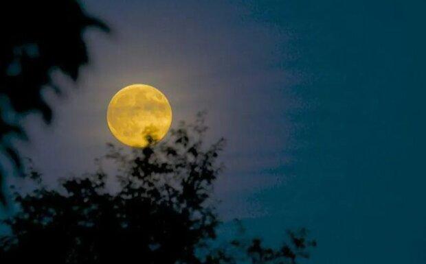 Faza księżyca na 2 października 2020 roku. Co przyniesie piątkowa pełnia