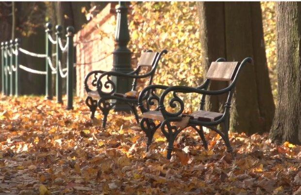 Będzie jeszcze kilka dni złotej polskiej jesieni? Meteorolodzy zapowiadają ocieplenie. Co dokładnie znalazło się w prognozie