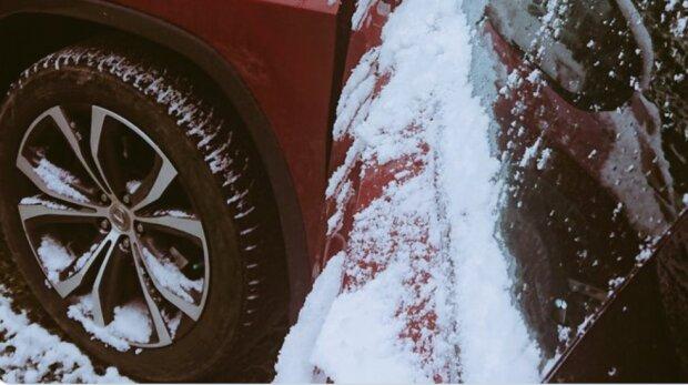 Śnieg, screen: Twitter/Justyna Kowalczyk