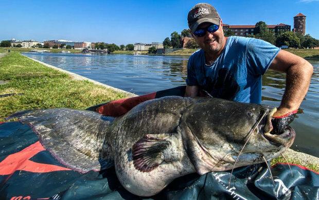 Monstrualna ryba wyłowiona z Wisły w Krakowie. Rybacy podzielili się niezwykłymi zdjęciami