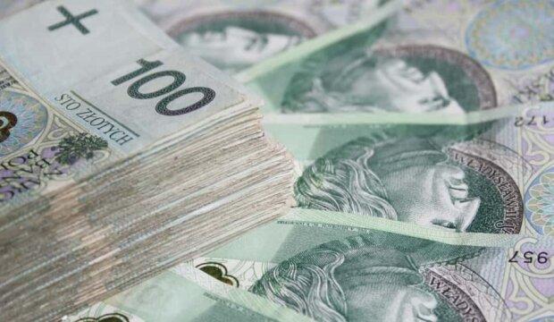Pieniądze. Źródło: zus.info.pl