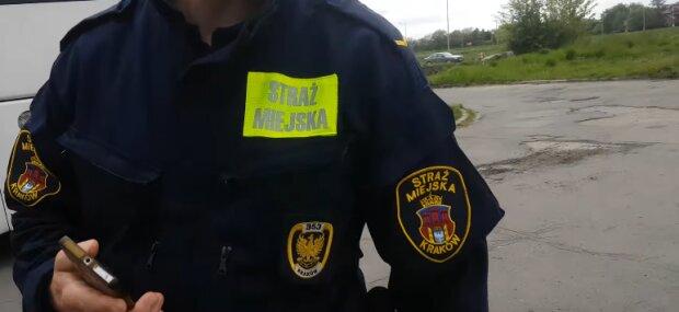 Kraków: interwencja strażników miejskich skończyła się odebraniem psa. To jak traktował go jego właściciel przeraża