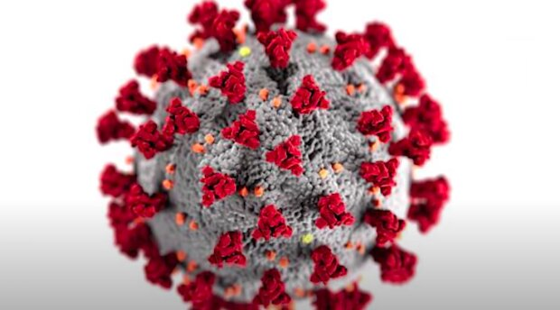 Koronawirus zbiera żniwo / YouTube:  Vox