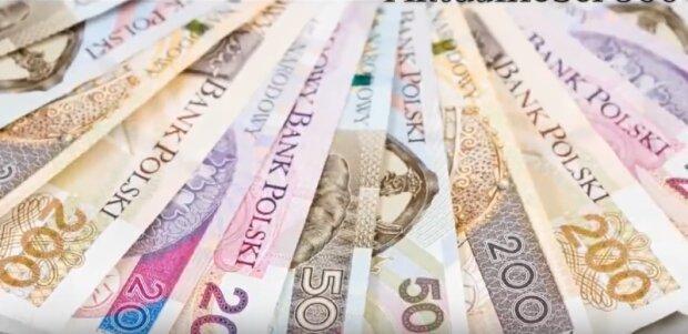 Ekstra pieniądze od Zakładu Ubezpieczeń Społecznych. Dziesiątki tysięcy seniorów z dodatkowymi pieniędzmi. Niektórzy otrzymają nawet 12 786 złotych