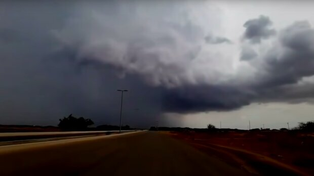 Pogoda nie będzie zbyt łaskawa! / YouTube:  Nature Video
