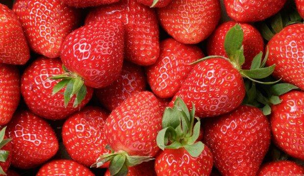 Jak najlepiej myć i przechowywać truskawki? Tylko sprawdzone sposoby, które pomogą ci cieszyć się owocami jak najdłużej