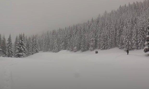 Jaka będzie tegoroczna zima? / YouTube: Tygodnik Podhalański