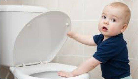 zawsze przykrywać toaletę, screen Google