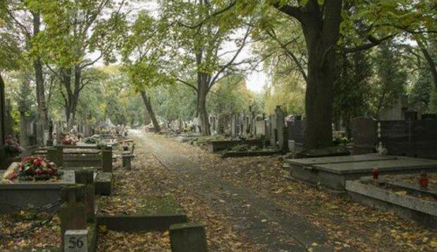 Skandaliczne zachowanie nastolatków na cmentarzu. Trzech nieletnich zatrzymała policja