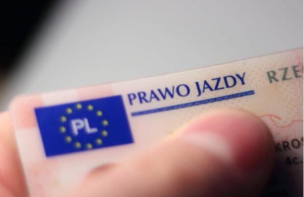 Prawo jazdy. screen: autowprost.pl
