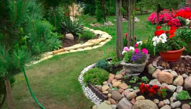 Ważne rady dla młodych ogrodników! / YouTube:  TSK-24