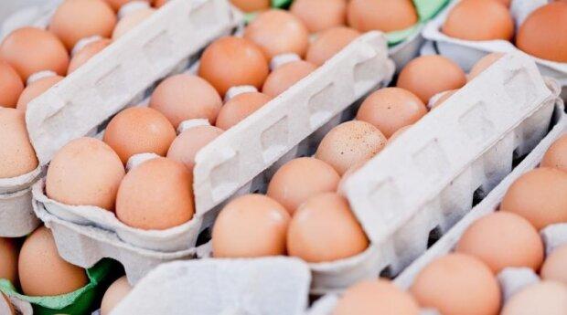 Kobieta przeprowadziła test na jajkach z marketu. Źródło: polki.pl