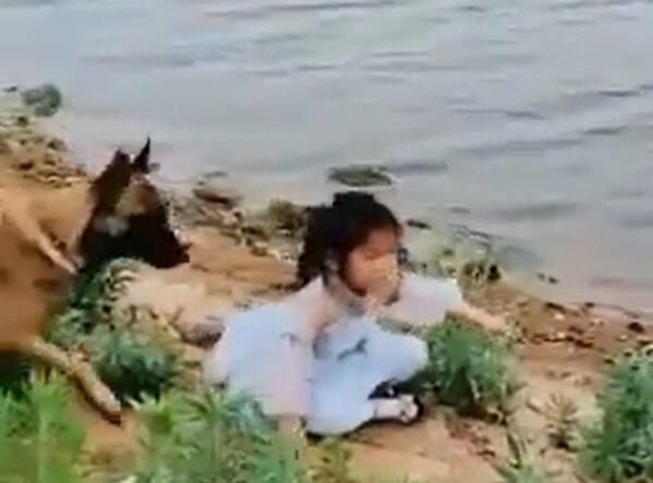 Pies uratował kilkuletnią dziewczynkę nad wodą. Wzruszające nagranie robi furorę w sieci