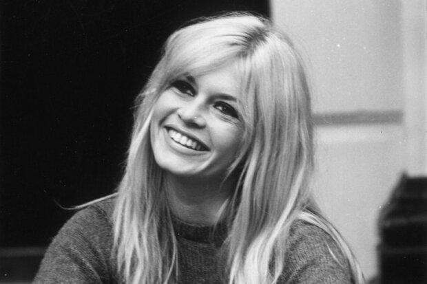 Brigitte Bardot porzuciła karierę dla... zwierząt. Nietypowa historia światowej sławy gwiazdy