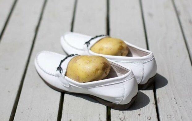 Obierz ziemniaki przed snem i włóż je do butów. Rano nie będziesz mógł uwierzyć własnym oczom