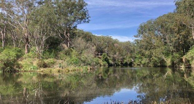 Dbajmy o przyrodę! / sydneyuncovered.com