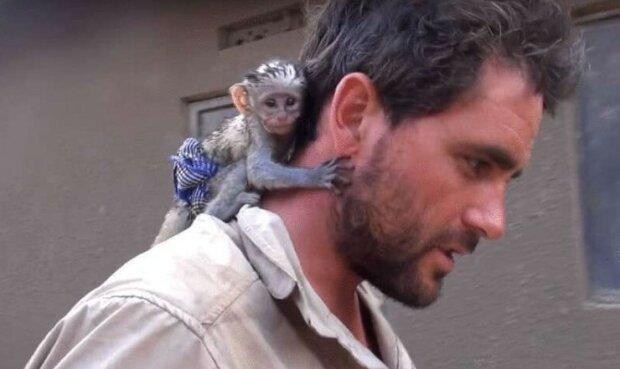 Mężczyzna uratował małpę od ognia, a ona mu podziękowała, screen Google