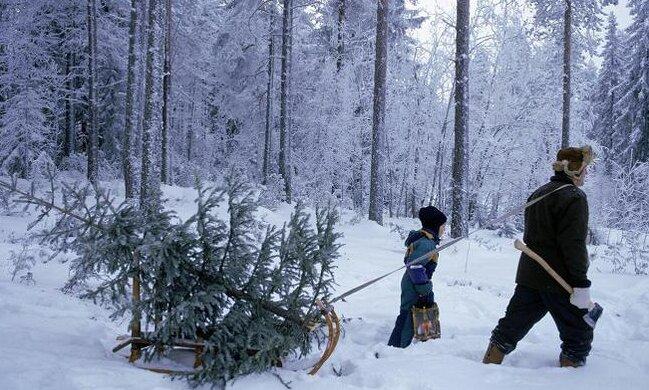 Świąteczna prognoza pogody. Czy doczekamy się w końcu białego Bożego Narodzenia i Sylwestra