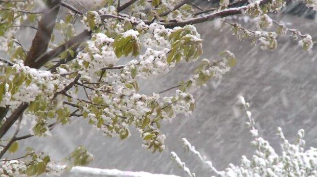 Zima, śnieg. Źródło: Youtube TKB Dolsat