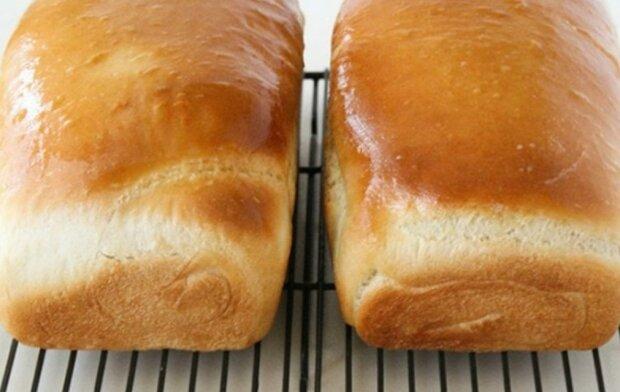 Pyszny i zdrowy domowy chleb. Ten przepis pomoże, gdy zapomnisz o chlebie na zakupach