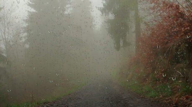 Czekająnas duże opady deszczu! / YouTube