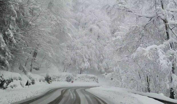 Śnieg w Boże Narodzenie?/screen Youtube @REC Antyhing