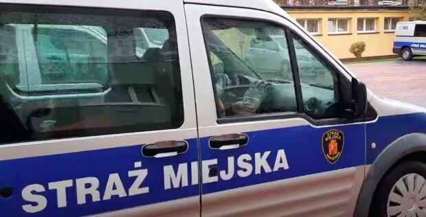 Nieoceniona pomoc! / YouTube:  Straż Miejska Warszawa