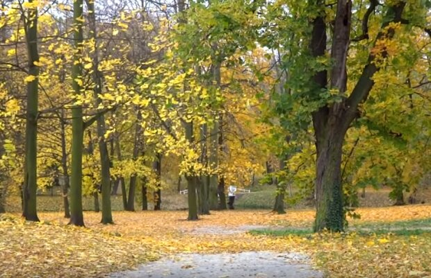 To już początek jesieni. Nadchodzi prognozowane załamanie pogody. Co nas czeka w Polsce w najbliższych dniach