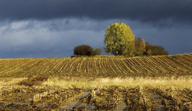 Załamanie pogody, deszcz, burza. Screen: Wiadomosci.wp.pl