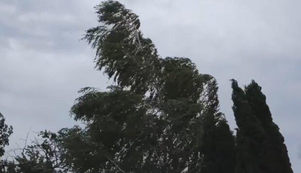Silny wiatr/ YouTube @ MeteoForecasterPL