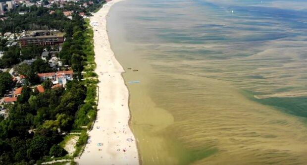 Pomorze: zakwit sinic w morzu i jeziorach. Gdzie zamknięto kąpieliska