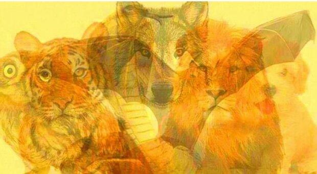 """To. zwierze, które zauważyłeś jako pierwsze, wskaże te """"bestialskie"""" cechy charakteru, którymi obdarzyła cię natura"""
